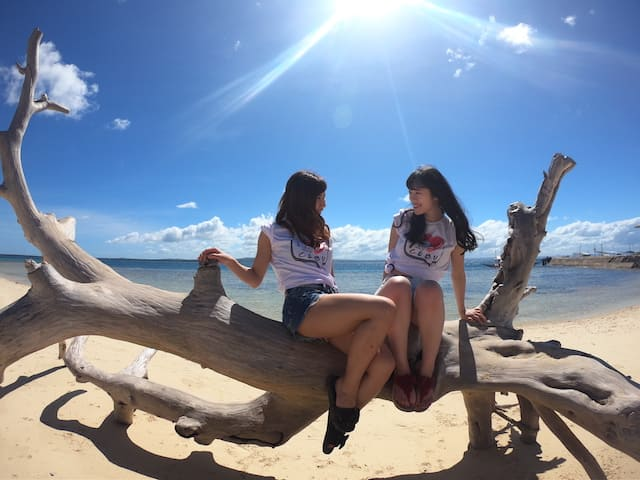 ナルスアン島に自力とツアーで比較!【セブ島アイランドホッピング】