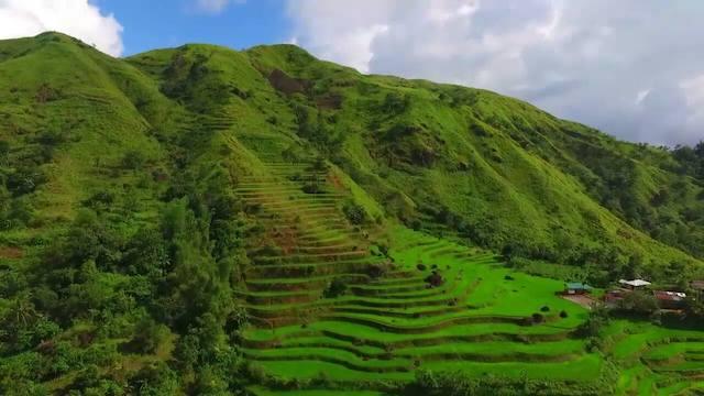 Rice Terraces of the Philippine Cordill