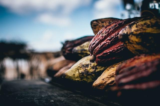 【保存版】フィリピンの高級チョコレートブランド人気7選まとめ