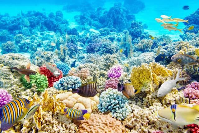 フィリピンの観光地10選まとめ【絶対に旅行すべき絶景の場所】