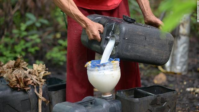 ココナッツ酒のランバノグとドゥバ【フィリピン現地のお酒】