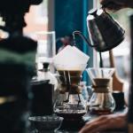 【シベットコーヒーとは】猫の糞から作られる世界一貴重なコーヒー